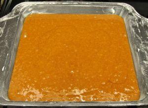 OrangeGinger3
